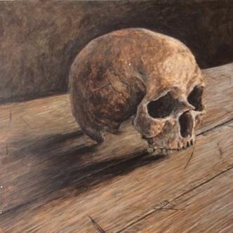 Skull Study 2016
