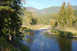 Can't get enough of the Moyie River!