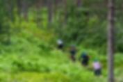 BB20160621_SognTerrengsykkel_DSC00422.jp