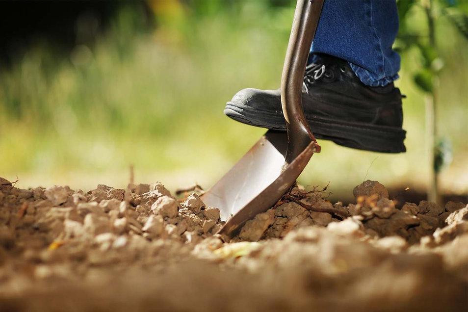 The-best-shovel-option.jpg