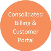 consolidated billing button.jpg