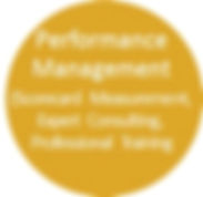 performance mgmt button.jpg