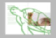 Screen Shot 2020-01-23 at 19.26.19.png