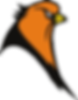 Copy of Oriole (Transparent Bgd).png