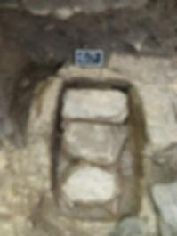 Fig 6 C24 1137.JPG