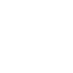 Dave Sonntag_LOGO_white VECTOR 320px.png