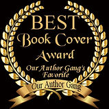 Best Book Cover Silver Feather