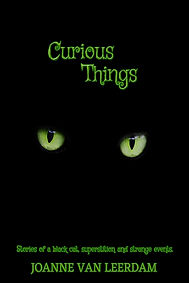 Curious Things Cover.jpg