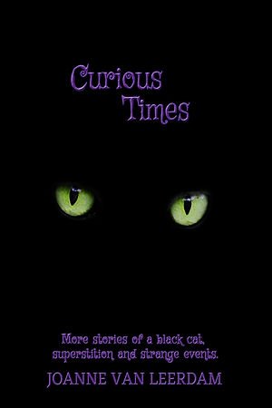 Curious Times eBook.jpg