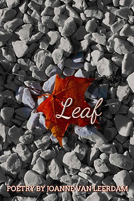 Promo Leaf Cover 2nd Ed eBook Cover 6x9