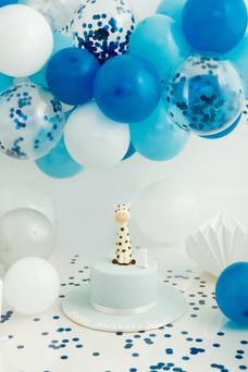1st Birthday Cake Smash and Splash Mansfield