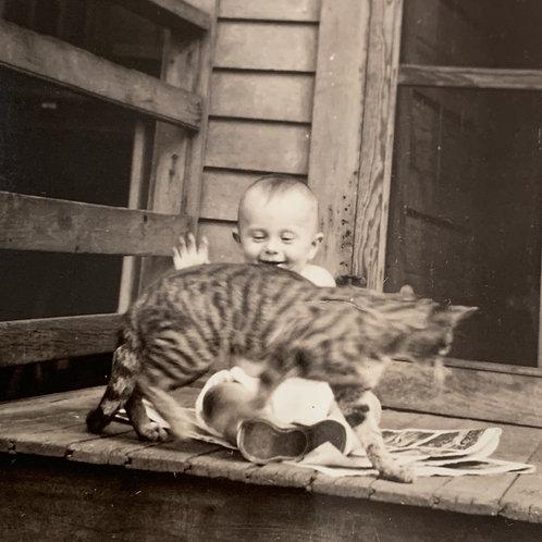 Cat Lover bundle