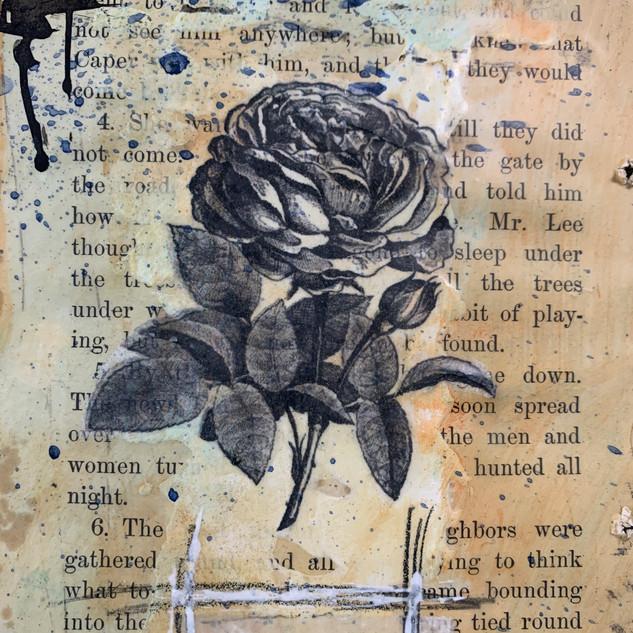 Railroad Wings Rose.JPG