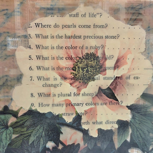 The Peony Has Questions