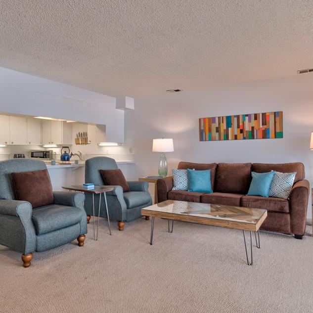 Unit 204 Living Room Redo 4.jpg