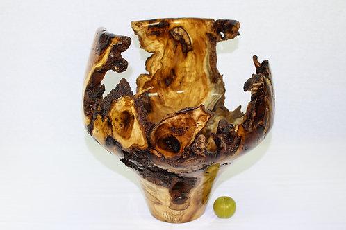 "#84 ""Stunner"" Huge Mulberry Burl Vase"