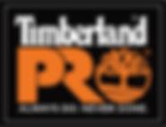 PRO-logo (2).jpg