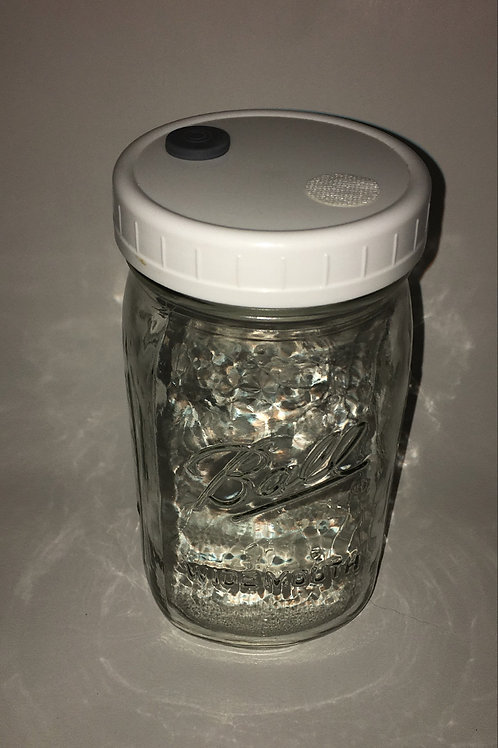 MYCOLOGY GRAIN SPAWN JAR (EMPTY) Q