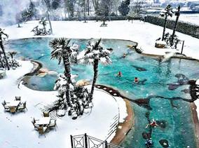 large resort size biodesign.jpg