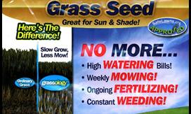 GRASSOLOGY!! As seen on TV!!