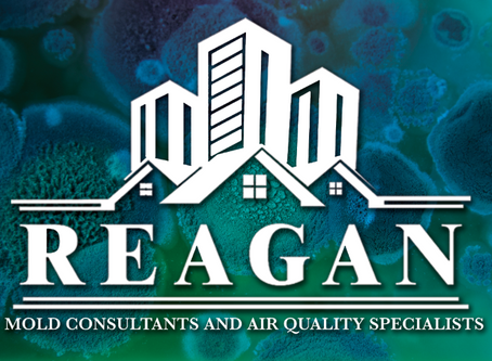Reagan Environmental