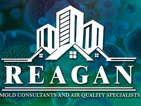 Reagan Environmental