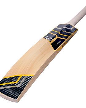 cricket-bat-ew-560-blue.jpg