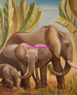Trio d'éléphants dans la Bananeraie