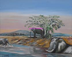 Le bain des éléphants