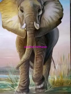 Eléphant d'Ouganda