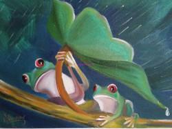 Les grenouilles sous la pluie