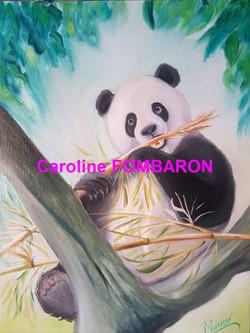 le panda gourmand 12P