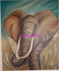 L'éléphant en colère