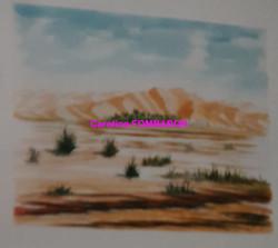 les dunes de l'Amatlich aquarelle 50x 65
