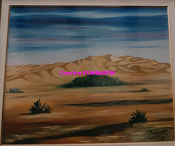 dunes mauritanie 15F