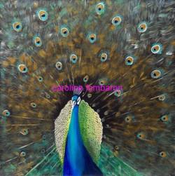 Le paon royal (acrylique sur toile)