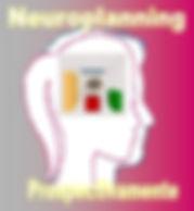 neuroplanning, nace el nuevo manager