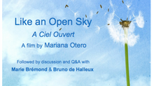 "ICLO-NLS, Irish Premiere of the Documentary ""Like an Open Sky"" by Mariana Otero. & Cli"