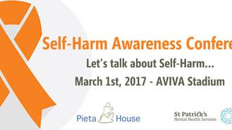 Self Harm Awareness Conference in the AVIVA Stadium on 1st March 2017, Dublin