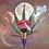 Thumbnail: Plant Medicine
