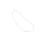 Copy of Copy of tranquil fern logo - blu