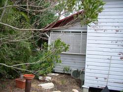 Termite Repairs South Brisbane - CRC
