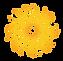 drrt symbol.png
