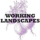 WorkingLandscapes - Logo.jpg