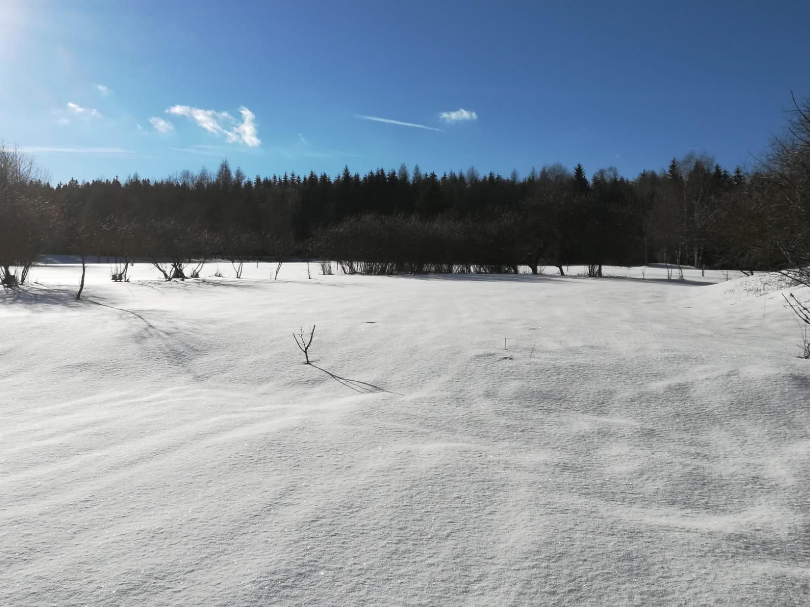 Winter Weite sonnig.jpg