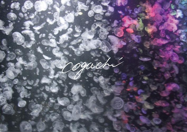 coguchi-TOP2.jpg