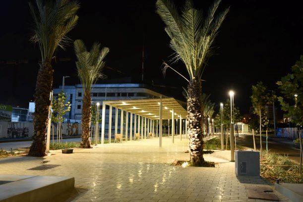 The city - MODI'IN lighting in palm trees
