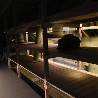 דגרשי-השינה בבטן ספינת המעפילים מוארים באור אפלולי, להדגשת האווירה הקשה