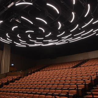 מבט מהצד - תאורת האולם המיוחדת באולם ויקס