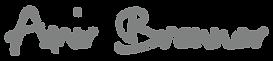 לוגו עמיר ברנר - חזרה לדף הבית